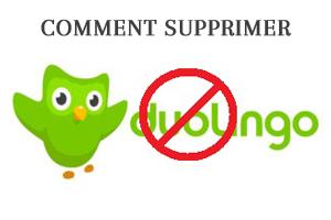 Supprimer mon compte dulingo